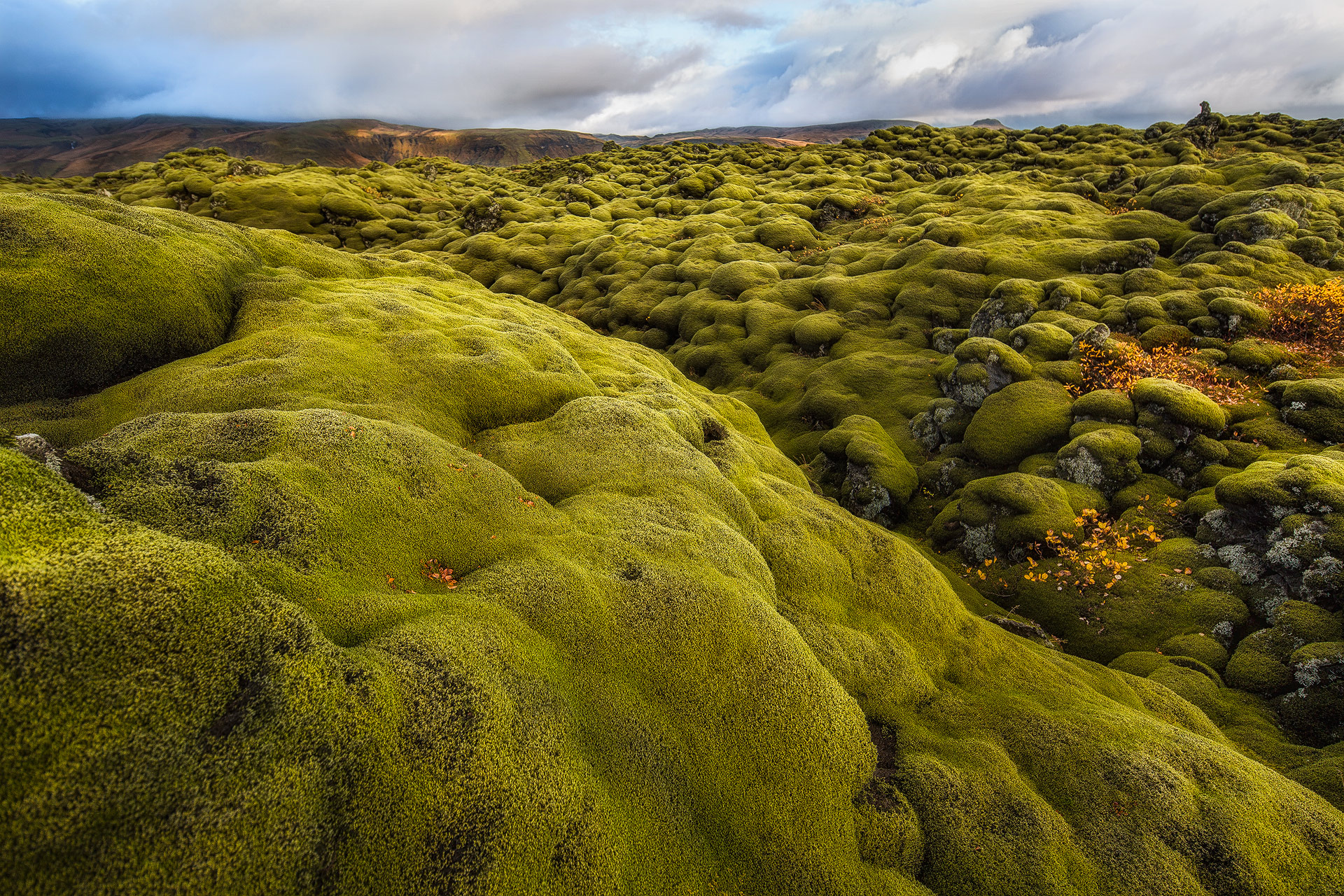Andrei Duman Moss Covered Hills, Iceland 10