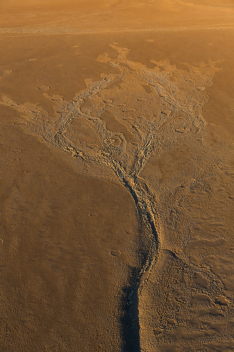 Andrei Duman Soussusvlei, Namibia Dried River Bed Aerial 01